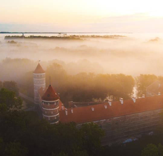 the Lithuanian Association of Castles and Manors